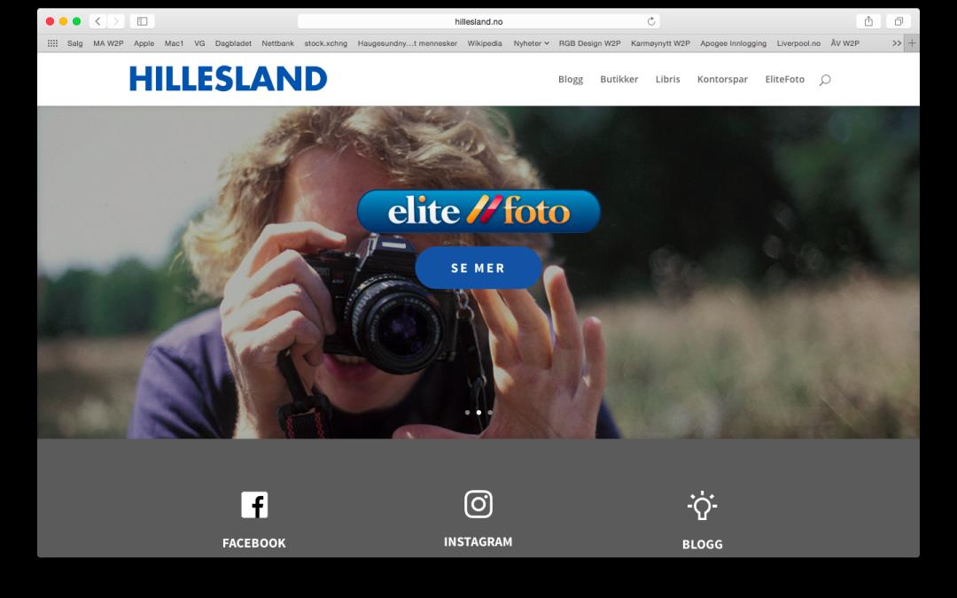 Nettsider for Hillesland